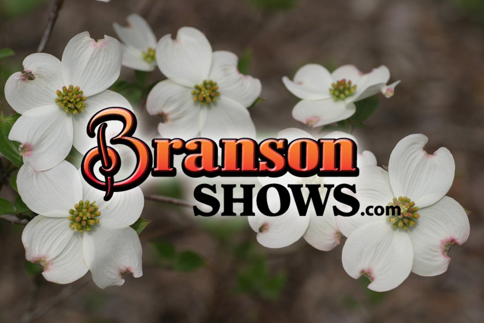 Start planning your trip to Branson, MO here: www.bransonshows.com