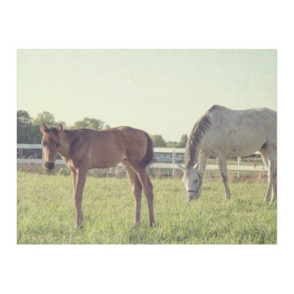 Mare And Foal Horses Fleece Blanket Zazzle Com With Images