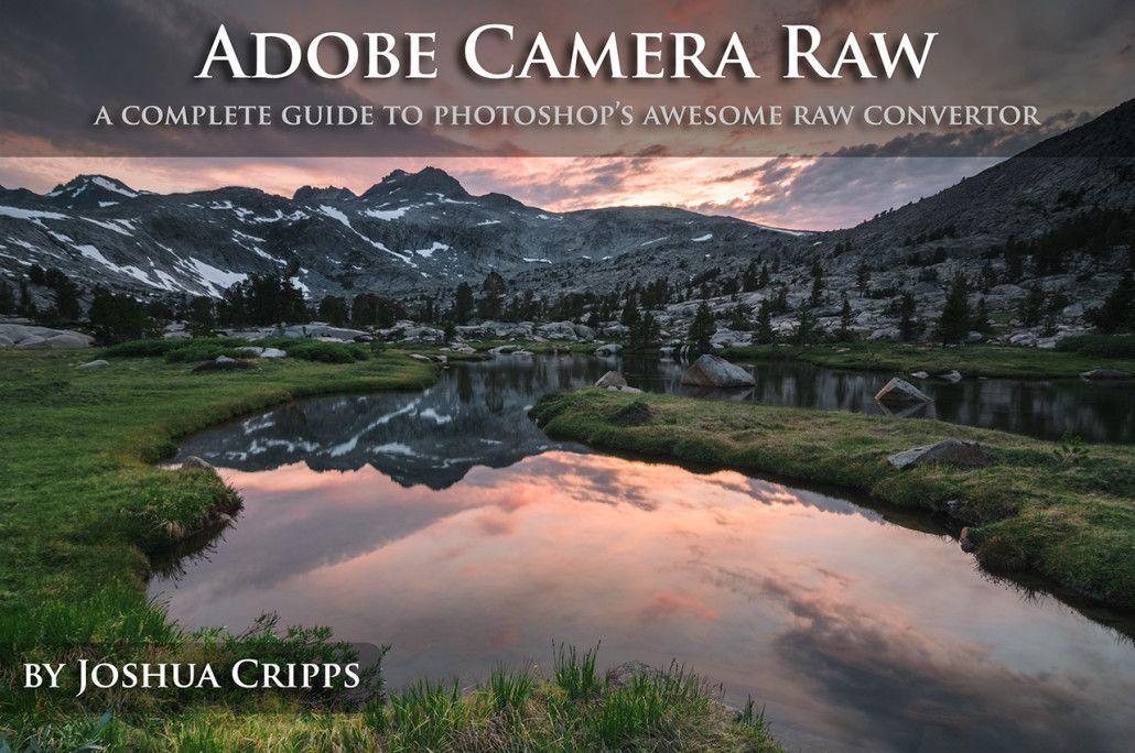 Pro Photo Tips