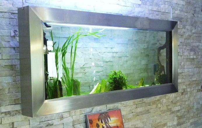 Aquarium mural ou aquarium encastr panoramiques www for Petit aquarium rond