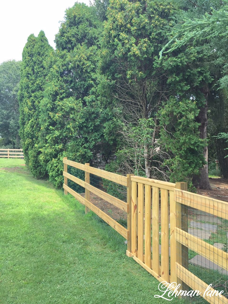 Diy post and rail fence moose containment done post