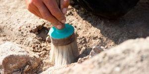 Археологи обнаружили семь древних захоронений https://rusevik.ru/news/357656