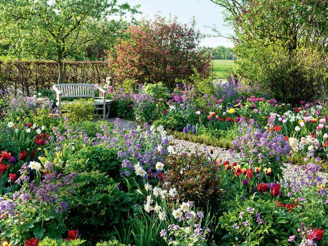 Kunterbunter Fruhling Gartenfotos Mein Garten Cottage Garden Spring Garden Garten