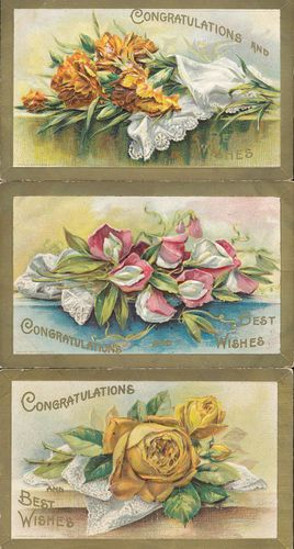 Lot of 3 Flowers~Congratulations-Best Wishes Emboss Greetings Postcards-ddd330