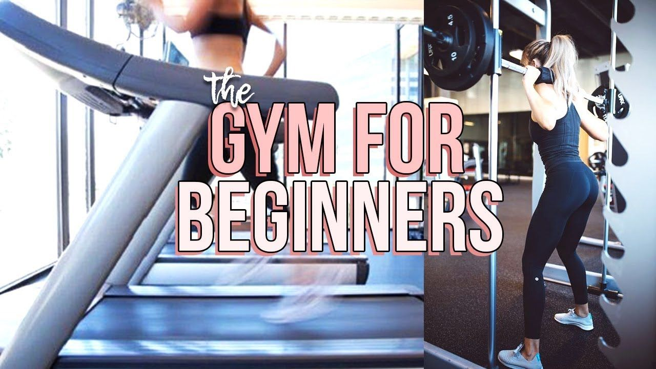 Beginner S Guide To The Gym Reese Regan Youtube Workout For Beginners Gym For Beginners Workout