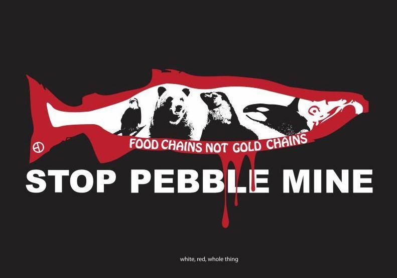 Image result for pebble salmon cartoon