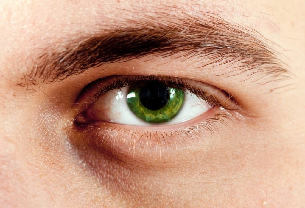 Looking for facts about green eyes? Want to know the percentage of people on earth with this eye color? Searching for green eyes facts? It's all right here.