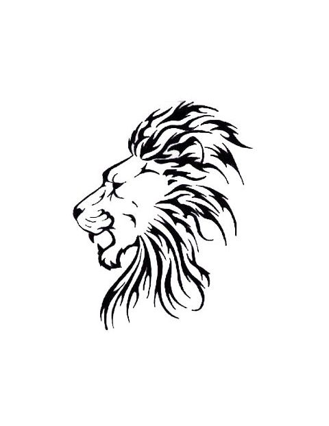 Lion Outline Side View Tattoo Jpg 480 622 Lion Head Drawing Lion Sketch Tribal Lion Tattoo