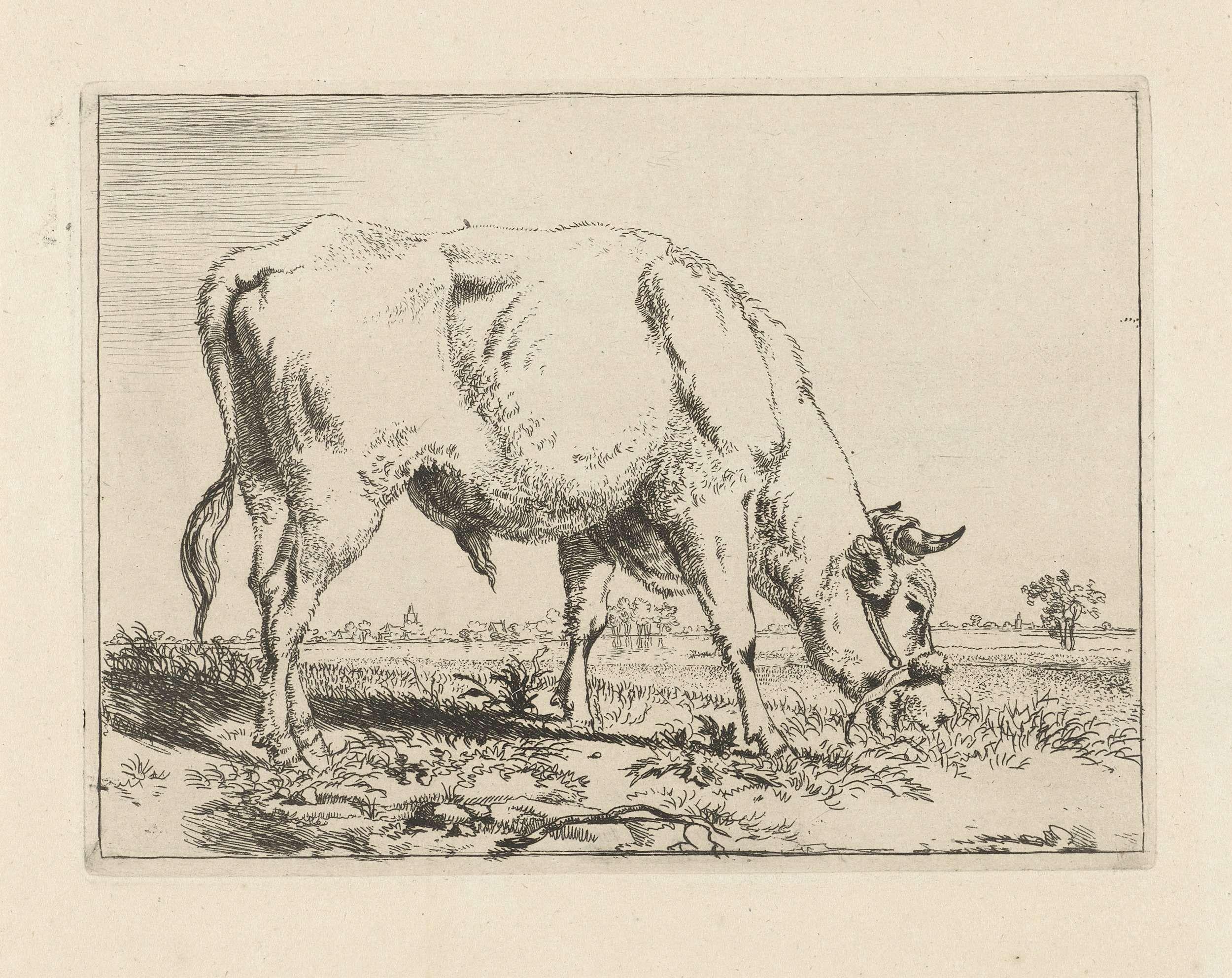 Pieter Gerardus van Os | Grazende stier, Pieter Gerardus van Os, 1798 |