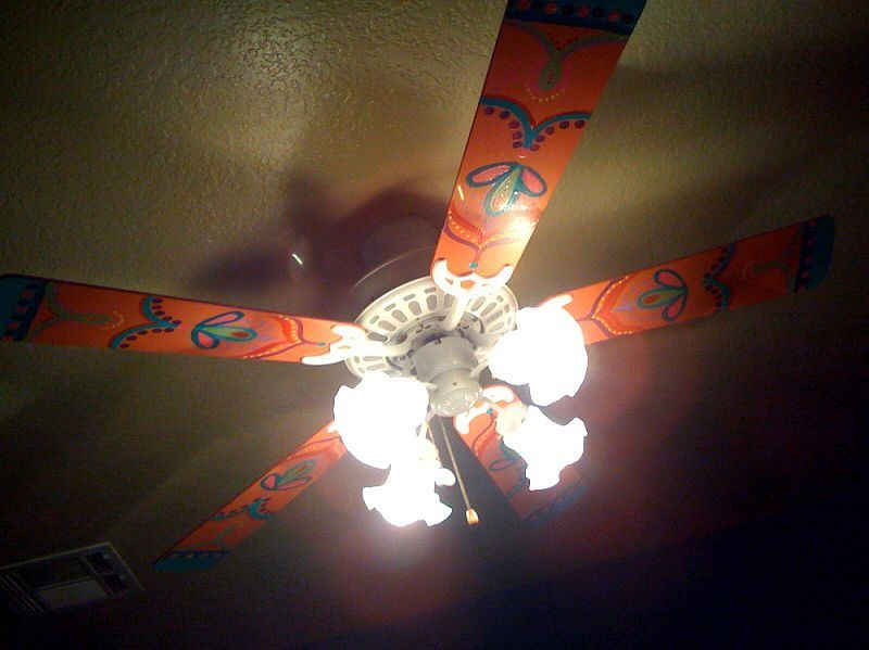 Unfortunately Living In The South Ceiling Fans Are Always Running To Keep Energy Costs Low Imagine How This Would Look Flying Around Your So