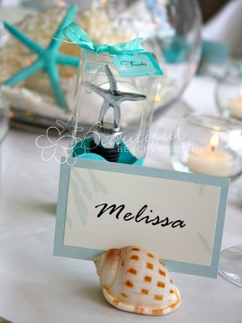 Natural Scallop Shell Table Number Holders With Images Beach