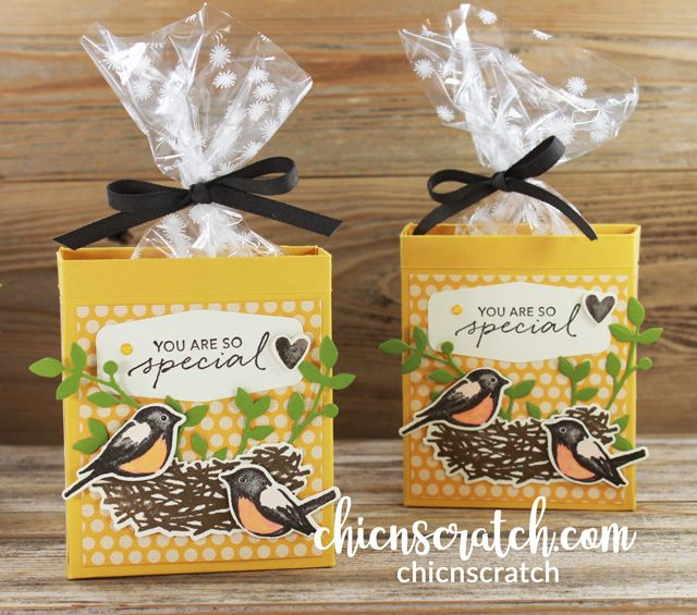 Birds & Branches Gift Box