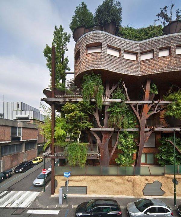 Urban treehouse