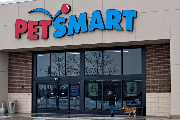 Two Dog Owners Claim Their Pets Died Following Grooming Appointments At New Jersey Petsmart People Petsmart Pet Smart Store Dog Death