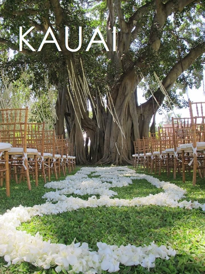 Plan An Intimate Hawaiian Wedding On The Island Of Kauai With Our Customizable Packages That Make A Beach Dream Come True