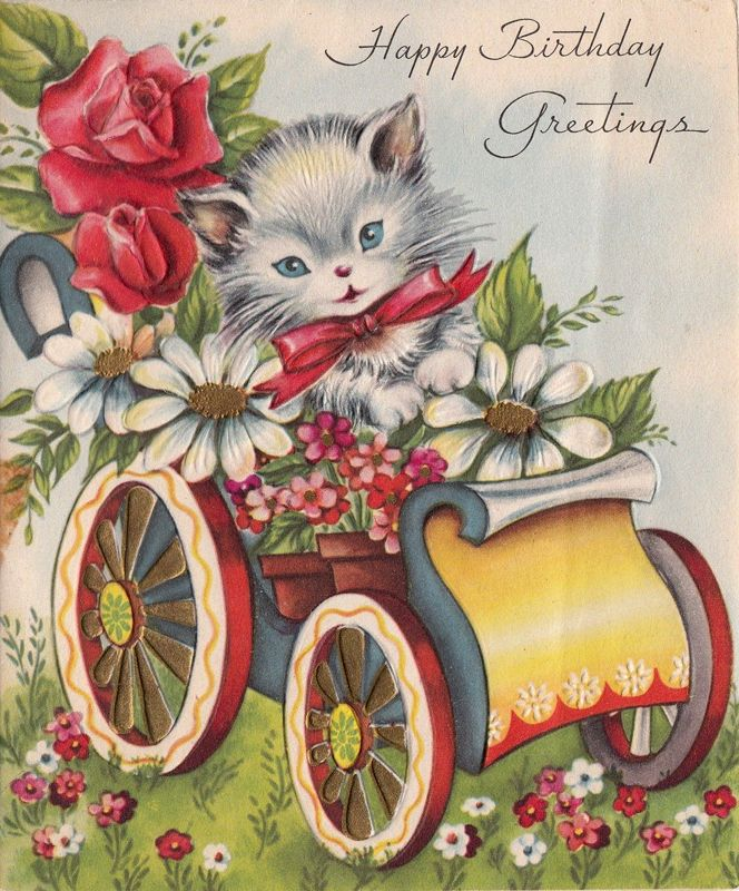 Vintage Cat Driving Car Loaded With Birthday Flowers