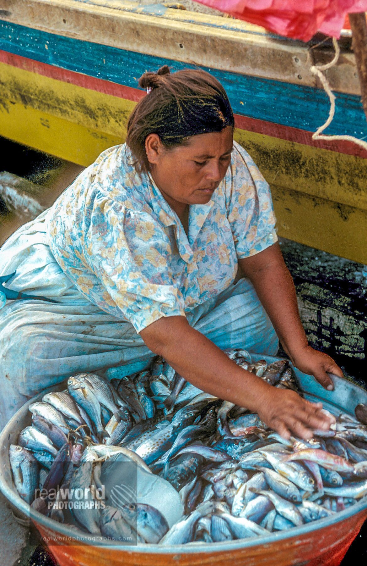 A woman prepares fish for sale off a pier in La Libertad, El Salvador, Central America.