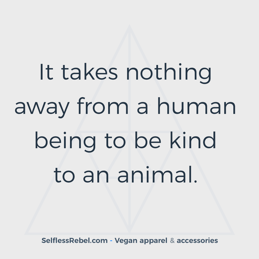 Vegan Quotes Vegan Quote 31 Conscious Cruelty Free Clothing That Helps