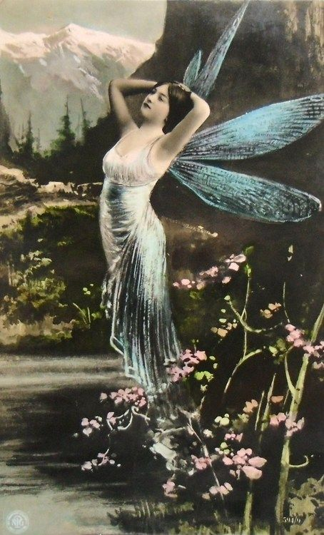 Beautiful Edwardian Butterfly Lady Postcard