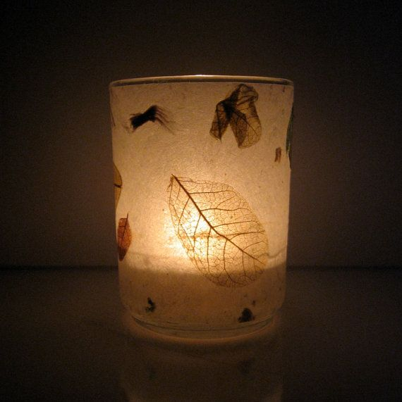 Scattered Raintree Leaves Earth Light by paperplanet