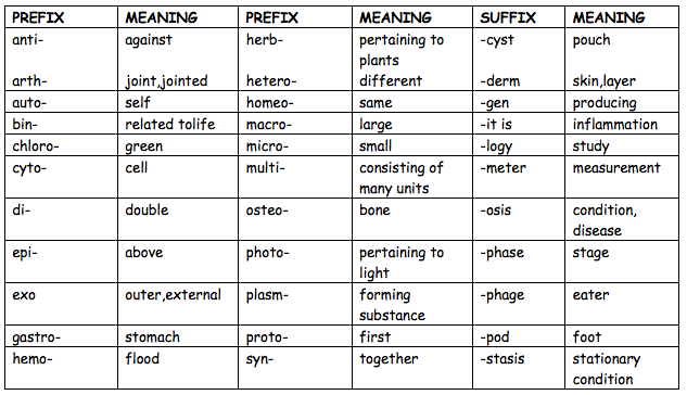 Prefixes and Suffixes - Grammar for Kids - Google Sites