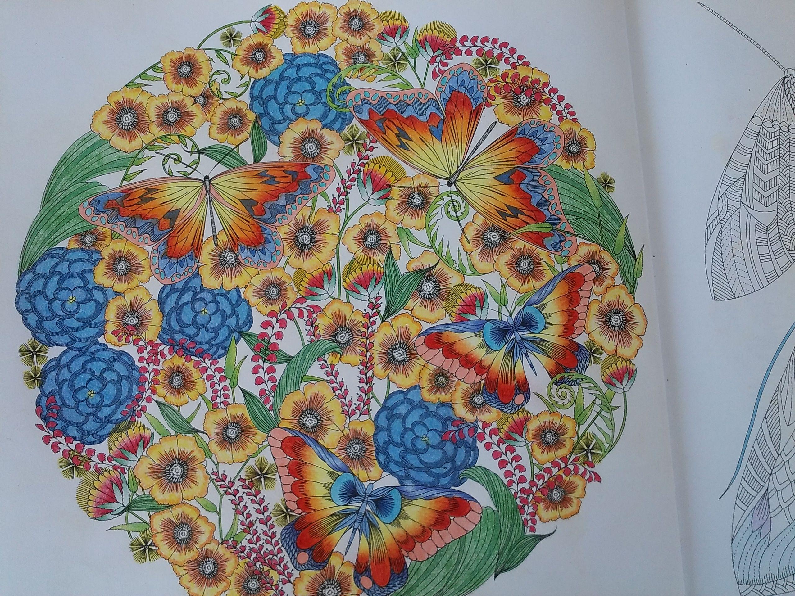 Animal kingdom coloring book gorilla - Coloring Books Millie Marotta Animal Kingdom By Mandarina