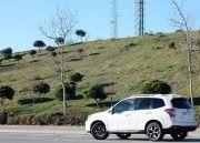 Sabías que Subaru Forester: valor sólido