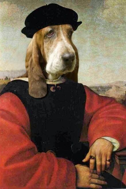 Veri aMICI: Cani e gatti come opere d'arte: capolavori al photoshop