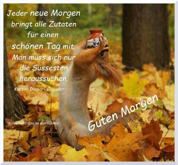Pin Von Oskar Frowerk Auf 4 Herbst Zitate Guten Morgen