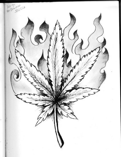 Gangster Drawings Of Weed Weed Leaf Drawing Tattoo Weed Lanabear