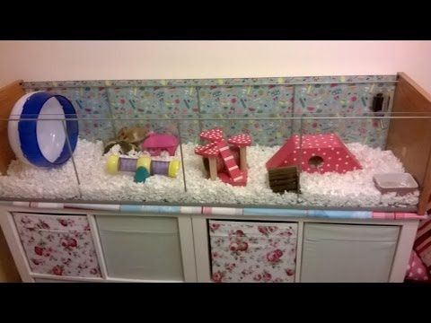 Syrian Hamster Cage Tour Marmaduke S Ikea Detolf Youtube Toy