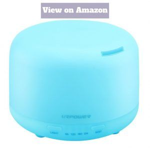 Best Humidifier 2020 Buyer's Guide and Reviews Homedust