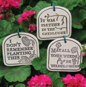 I Don T Remember Planting This It Was Prettier In The Catalogue May All Your Weeds Be Wildflowers Garden Si Funny Garden Signs Garden Quotes Garden Signs