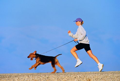 Trupanion Pet Insurance Dog People Your Dog Cat People Vs Dog People