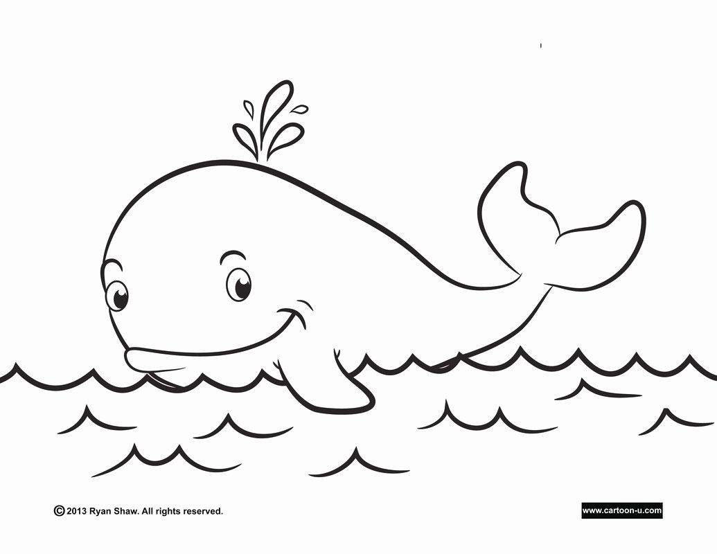 Blue Whale Coloring Page Best Of Blue Whale Coloring Pages