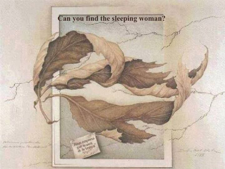 Can You Find The Sleeping Woman Illusion Art Optical Illusions