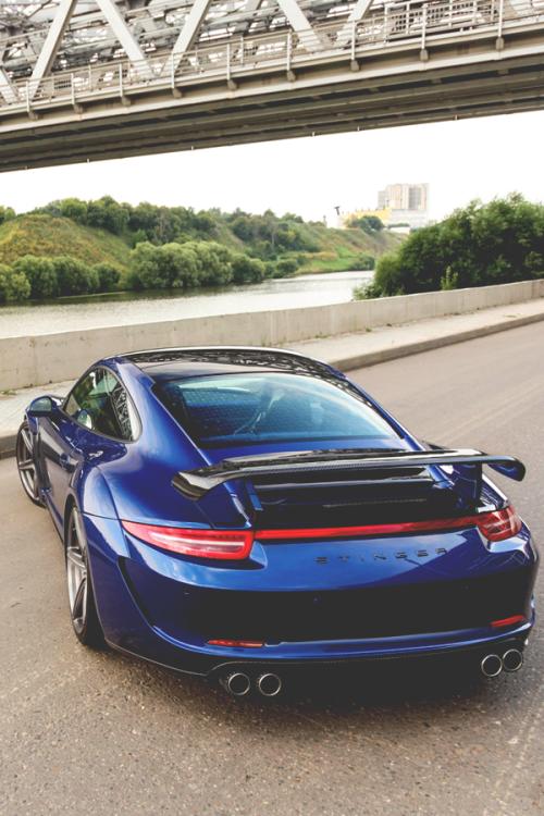 Stinger Super Cars Porsche 911