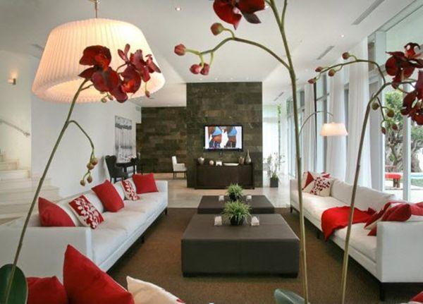 Living Room Accessories – Simple yet Elegant | living room ...