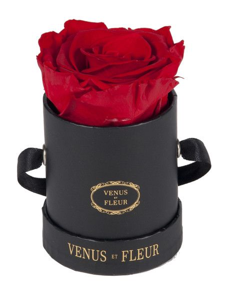 Le Mini Round Lasts One Year Best Online Flowers Rose Arrangements Valentine Gift For Wife