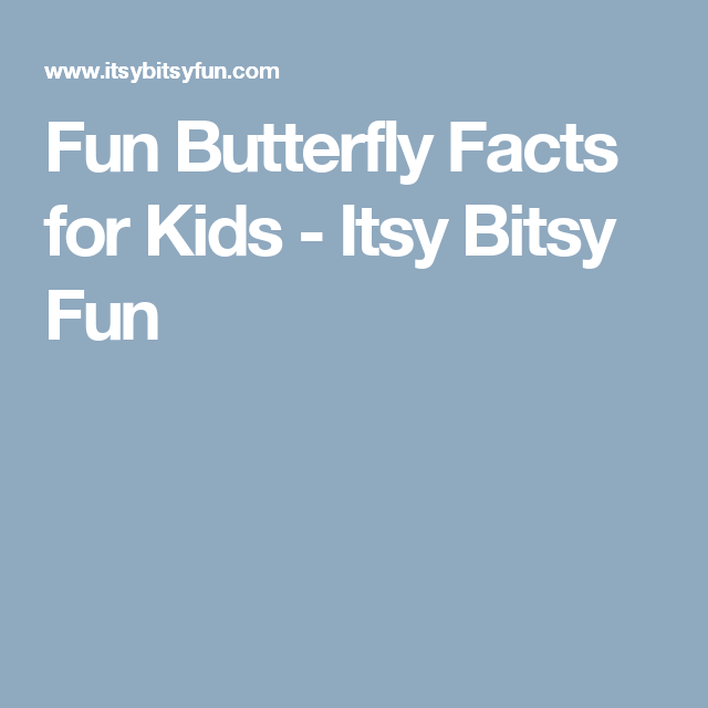 Fun Butterfly Facts for Kids | Butterfly facts, Worksheets and School