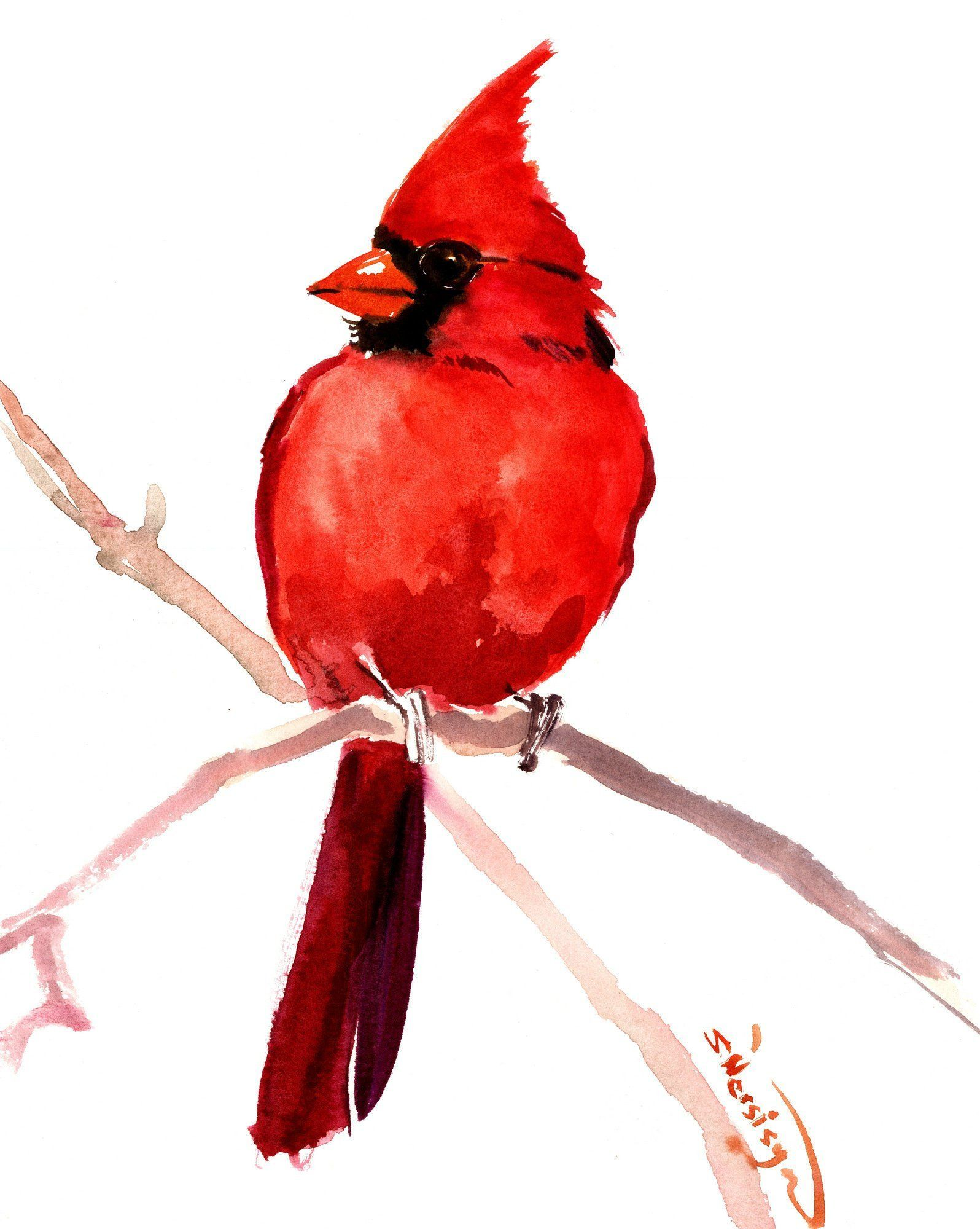 Cardinal Bird Artwork Original Painting Watercolor Birds Red