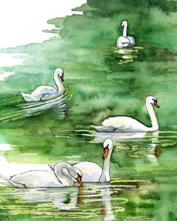 Acquerello pittura pittura di Swan cigno stampa stampa | Etsy #fitness inspiration desenho Pittura a...
