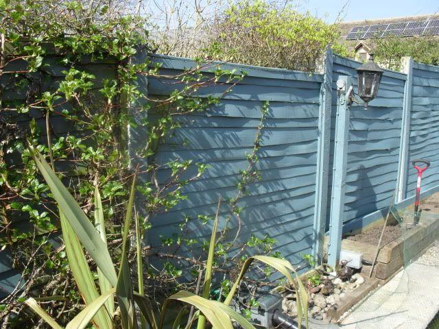 Beaumont Blue Paint Cuprinol Google Search Cuprinol Garden Shades Shade Garden Blue Garden