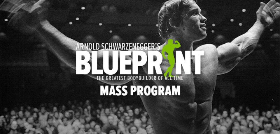 Arnold schwarzeneggers blueprint to mass bodybuilder physique arnold schwarzeneggers blueprint to mass malvernweather Choice Image
