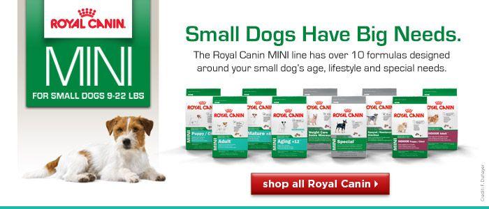 Royal Canin Mini Dog Food Mini Dogs Royal Canin Dog Ages