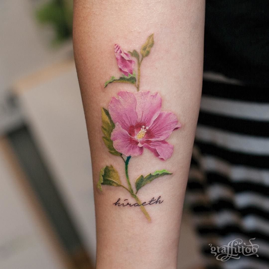 Rose Of Sharon Potential Tats Pinterest Tattoos Flower