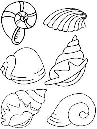 Bildergebnis Für Basteln Mit Muscheln Vorlagen Sea Creatures
