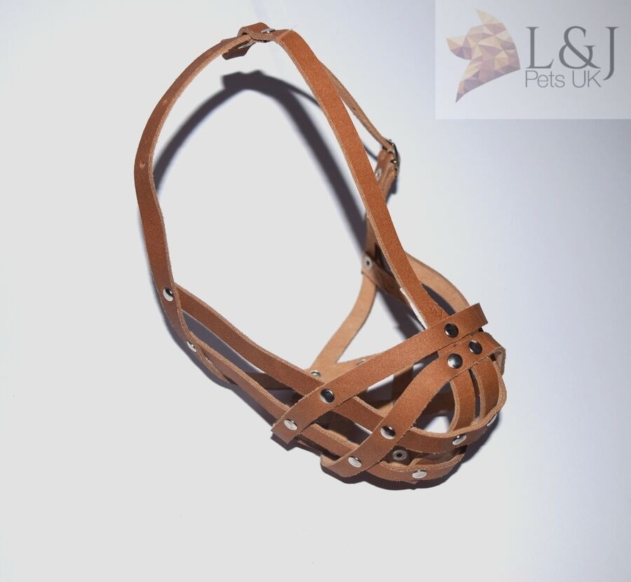 Leather Dog Muzzle For Shih Tzu And Other Flat Face Faced Short