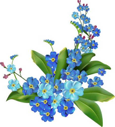 Beautiful Flowers #1 (05).png