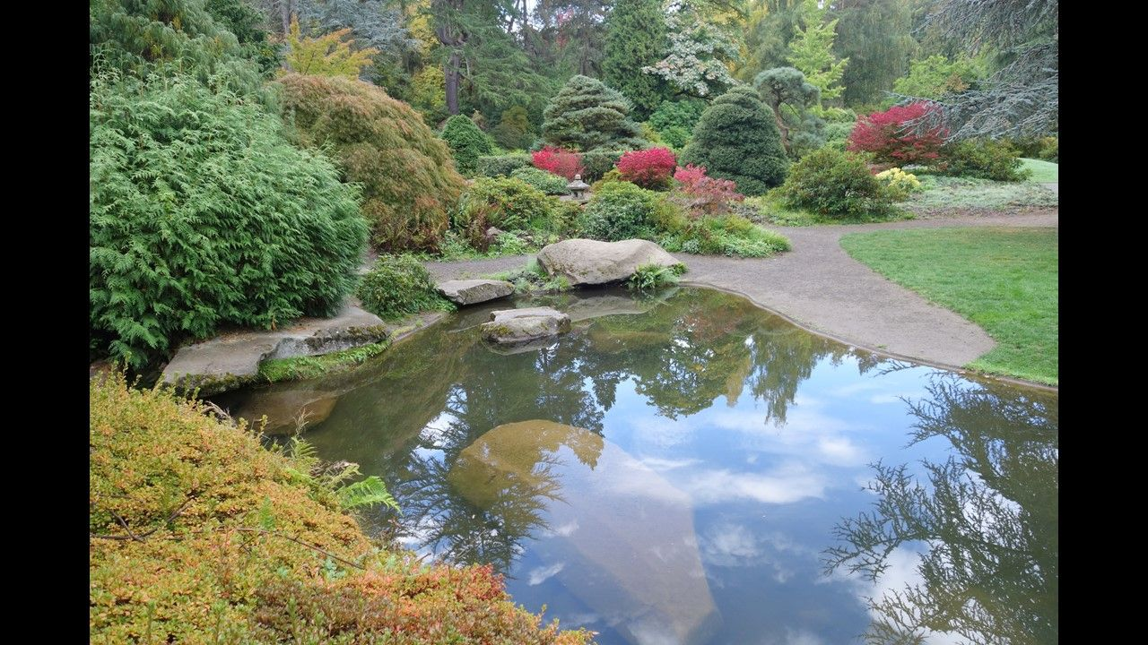 The Kubota Gardens are a spectacular setting of hills and